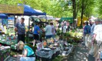 Jarní Valašská zahrada 2017 nabídne rozmanité zboží pro zahrádkáře
